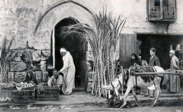 Lehnert & Landrock - Zuckerrohrverkäufer in Kairo