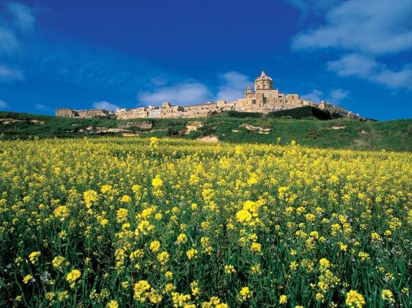 19 Mdina, Malta
