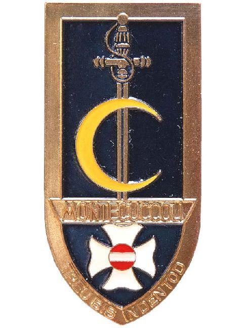 Montecuccoli Jahrgangsabzeichen1980 Theresianische Mil-Ak