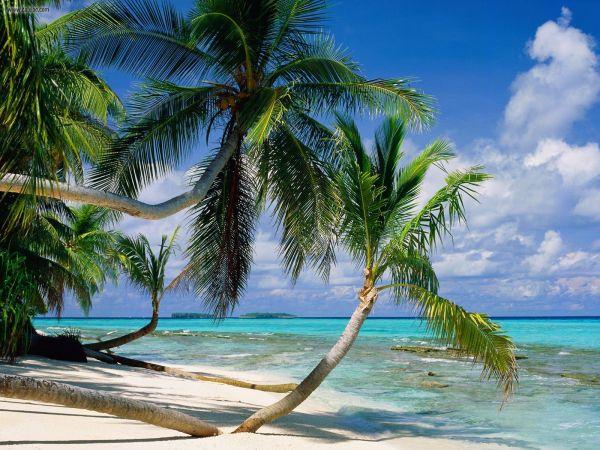 Insel Tepuka, Tuvalu