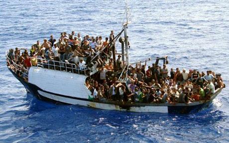 Afrikanische Invasoren