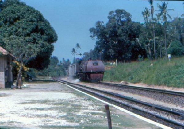 Ein Zug fährt in den 1960ern in Changamwe in Südkenia ein.