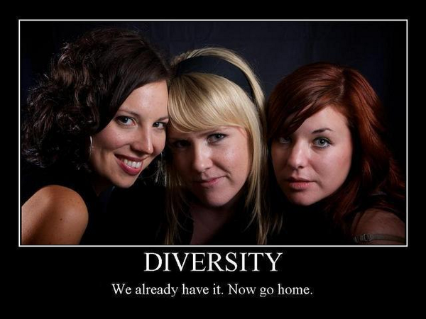 Diversity - We already have it