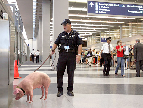 Airport-Security-R