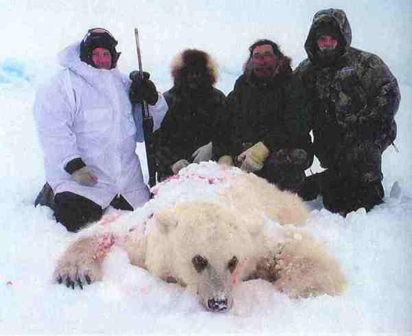Am 10. Mai 2006 schossen Jäger in Kanada diesen Hybridbären – Vater Eisbär, Mutter Grizzly. Damals war die Eisbärenjagd noch erlaubt, sie wurde erst 2008 verboten.