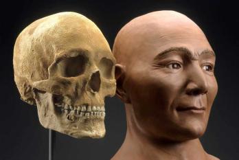 """Schädel und Rekonstruktion der 9.000 Jahre alten """"Spirit cave"""" Mumie aus Nevada/USA."""