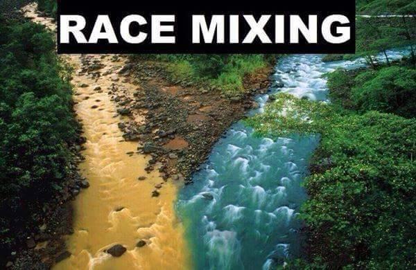 RaceMixing