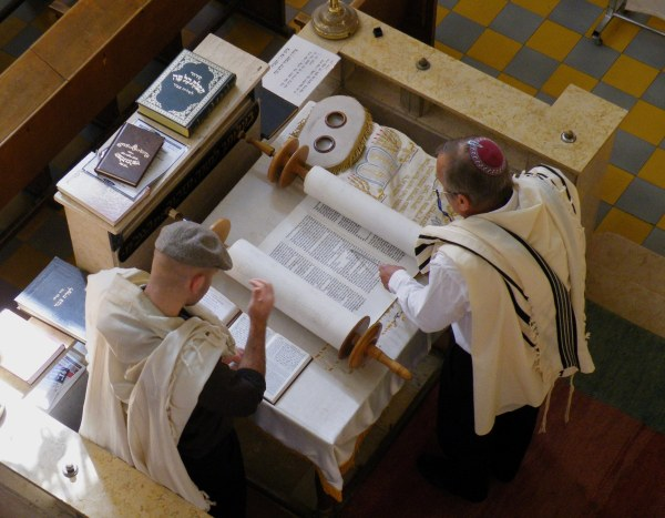 Juden studieren die Thora: was sagt uns dieses Dokument über die grundlegende biologische Natur ihrer Rasse?