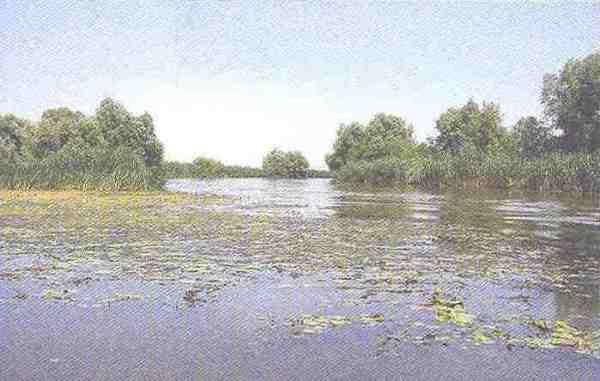 Das Wolgadelta bei Astrachan, in dessen Nähe sich vermutlich auch die chasarische Hauptstadt Itil befand.