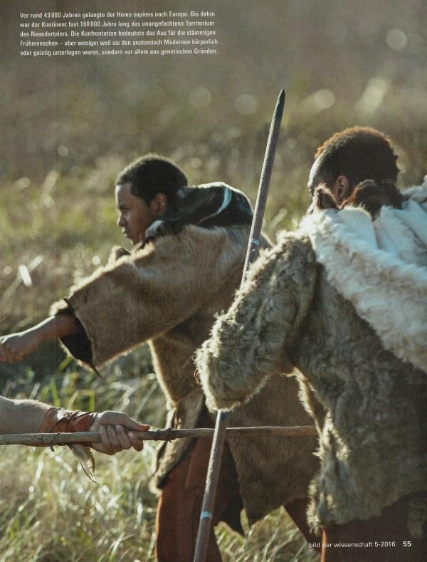 """""""Vor rund 43.000 Jahren gelangte der Homo sapiens nach Europa. Bis dahin war der Kontinent fast 160.000 Jahre lang das unangefochtene Territorium des Neandertalers. Die Konfrontation bedeutete das Aus für die stämmigen Frühmenschen – aber weniger weil sie den anatomisch Modernen körperlich oder geistig unterlegen waren, sondern vor allem aus genetischen Gründen."""""""
