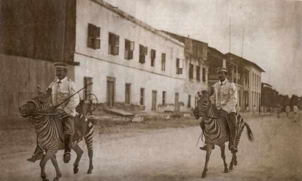 Kavalleristen der Deutschen Schutztruppe auf Zebras in Deutsch-Ostafrika, 1911.