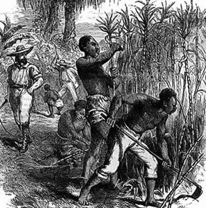 Die verborgene jüdische Rolle bei der Hervorbringung der Sklaverei in den Amerikas.